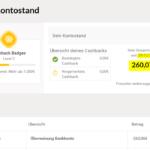 Warum verdiente ich in unter einem Jahr 260€ mit iGraal Cashback, vor allem mit Reisen und Hotels aber auch Strom usw.